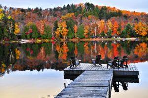 Fall in Raleigh North Carolina